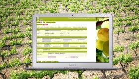 Vineyard registry