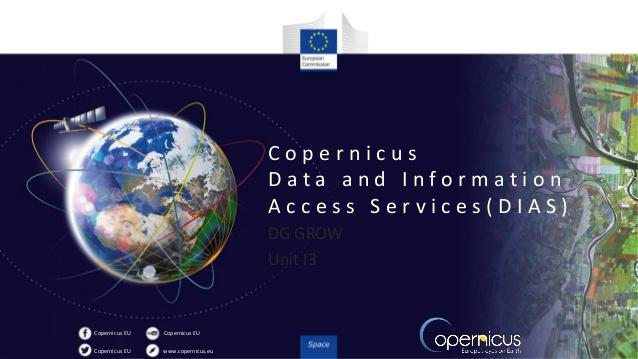 Sentinel Hub powering Copernicus Data and Information Access Services (DIAS)